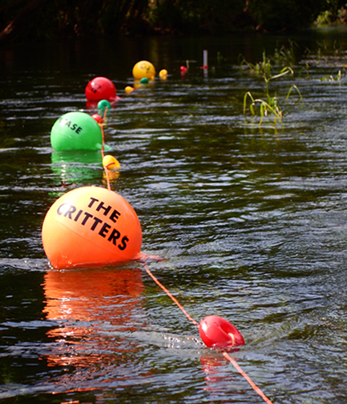Small buoys afloat at Bicentennial Park